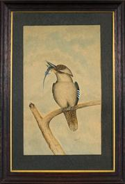 Sale 8449A - Lot 598 - E. P. Smith (XIX) - Kookaburra and Catch 47 x 29cm