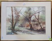 Sale 8604 - Lot 2046 - Phyllis Bray (1911 - 1991) (English) - Bushscape watercolour, 25 x 35cm, signed lower right