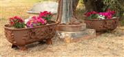 Sale 8871H - Lot 51 - A pair of trough form cast iron planters with petunias, each height 30 x length 70cm