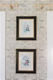 Sale 9087H - Lot 16 - Vintage English botanical print of a bouquet of roses and camellias. Ebony frame with gilt detailing.H 54cm W 46cm D 2cm