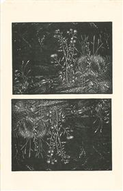 Sale 8896A - Lot 5018 - Lewis Roy Davies (1897 - 1979) (2 works) - Untitled (Flowers by a Stream) 11 x 15 cm, each