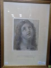 Sale 8557 - Lot 2016 - Italian School Portrait (Sketch) , conte on paper (AF) 54.5 x 39.5cm (frame size)