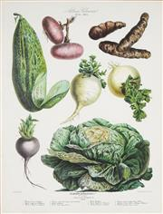 Sale 8773A - Lot 5016 - After E. Champin & Coutance (4 works) - Vegetable Varieties 84.5 x 68.5cm, each (frame size)