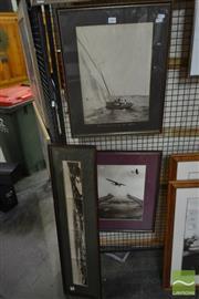 Sale 8522 - Lot 2087 - Three Vintage Photos Of Sydney