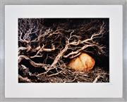 Sale 8347A - Lot 91 - David Baster (XX - ) - Untitled, 2003 49.5 x 70.5cm