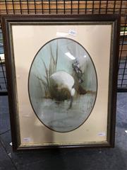 Sale 8720 - Lot 2045 - Peter Abraham - Spoonbill 36 x 25.5cm