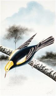 Sale 9021 - Lot 577 - Herbert H. Calvert (1870 - 1923) - Bird Study, 1922 53.5 x 31 cm (frame: 87 x 63 x 4 cm)