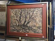 Sale 8861 - Lot 2044 - Artist Unknown - Tree Studyoil on canvas (AF), , 61.5 x 76.5cm, signed lower left