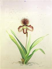 Sale 8663 - Lot 2019 - Blake Twigden - Orchid, 1985 watercolour (AF), 71 x 62cm, signed lower right