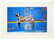 Sale 8411A - Lot 5068 - Banksy (1974 - ) - Bronx Zoo 38 x 58cm (frame size: 58 x 79cm)