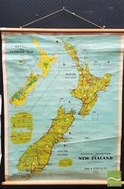 Sale 8409 - Lot 1007 - Vintage Chas. H. Scally Educational Map of New Zealand