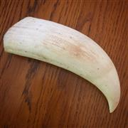 Sale 8878T - Lot 85 - Whales Tooth Length - 16.8cm Weight - 290grams