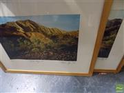 Sale 8461A - Lot 2084 - Cameron Kay, 2 x Flinders Ranges, S.A Framed Photographs