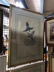 Sale 8853 - Lot 2061 - J. Gould & W. Hart - Psitteuteles Rubronotatus 50.5 x 33 cm