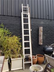 Sale 8601 - Lot 1259 - Vintage Ladders x 2