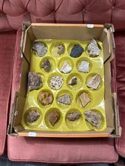 Sale 8896 - Lot 1068 - Box of Assorted Fossils