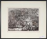 Sale 9053 - Lot 2013 - Judith King Cherry Tree etching edition of 6 (frame: 38 x 45.5 cm) signed -