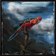Sale 9023H - Lot 56 - Paul Ryan, Parrot, oil on canvas 51.5cm x 51cm Signed Verso.