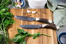 Sale 9156L - Lot 87 - USK Signature Jumbo Steak Knife Set of 4 -  Antler Handle