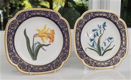 Sale 9256H - Lot 4 - A pair of Spode ceramic The Cabinet collection plates, depicting Melford Bluebell and Melford Daffodil, Dia 22.5cm.