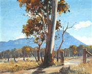 Sale 9055A - Lot 5003 - Dudley Parker (1914 - 1989) - Sunlit Gum 36 x 44 cm (frame: 56 x 63 x 4 cm)