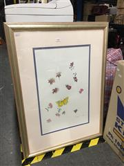 Sale 8674 - Lot 2064 - Bette Watson - 2 works, Flowers & Butterflies, gouache, 61.5 x 84cm, signed lower right