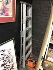 Sale 8819 - Lot 2217 - Bunnings Ladder