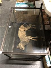 Sale 8809 - Lot 1022 - Mummified Feline, in good quality Tasmanian oak case