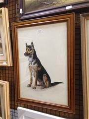 Sale 8767 - Lot 2028 - Greg Lipman - German shepherd, gouache, frame size: 48 x 36cm, signed lower right