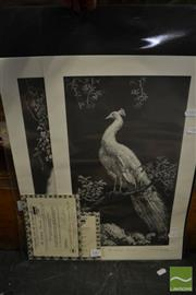 Sale 8458 - Lot 2087 - Lionel Lindsay, Quantity of (10) facsimile etchings, Morning Glory (5) & The White Peacock (5) (each with certificate)