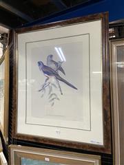 Sale 9050 - Lot 2007 - John Gould Decorative Print Platycercus Haematogaster: Blue Bonnet frame: 74 x 63cm -