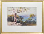 Sale 8286 - Lot 576 - William Lister Lister (1859 - 1943) - Sydney Harbour Overlooking Chowder Bay 32.5 x 51cm