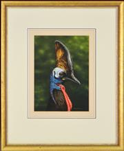 Sale 8323A - Lot 34 - Rod Scott (active 1980s) - Untitled (Casawary) 28.5 x 21cm