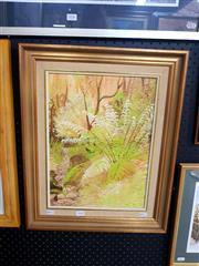 Sale 8695 - Lot 2048 - Cam Clarke - Rainforest Ferns, oil on board, 54 x 44cm (frame size), signed lower right