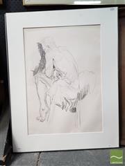 Sale 8495 - Lot 2036 - Artist Unknown - Male Figure and Drape (A.F.) 56.5 x 46.5cm