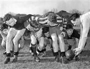 Sale 8754A - Lot 100 - Colin Windon and Sydney Grammer School Team, Sydney, NSW, 1950 - 20 x 25cm