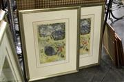 Sale 8301A - Lot 34 - Ingrid Johnstone (1941 - ) (2 works) - Shark Series I - MYK 45 x 30.5cm, each