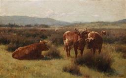 Sale 9125 - Lot 527 - Jan Hendrik Scheltema (1861 - 1941) Untitled (Cattle resting) oil canvas on board 34.5 x 54.5 cm (frame: 59 x79 x 4 cm) signed lower...
