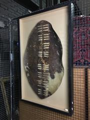Sale 8758 - Lot 53 - Zulu Leather Shield, framed