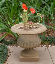 Sale 8644A - Lot 3 - A pair of composite campagna form urns, planted with geranium, height of urn 34cm.