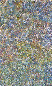 Sale 8344 - Lot 531 - Bessie Pitjara (c1960 - ) - Bush Plum 153 x 95cm