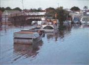 Sale 8565 - Lot 527 - Rick Everingham (1945 - ) - Morning, Wynnum Creek Brisbane 44 x 59.5cm