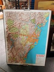 Sale 8695 - Lot 2098 - Sydney Topographical Map on Board
