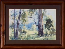 Sale 9125A - Lot 5019 - Herman Pekel (1956 - ) - Gum Trees & Landscape, 1990 33 x 50 cm (frame: 54 x 70 x 2 cm)