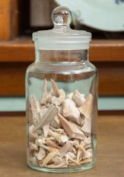 Sale 8795A - Lot 58 - An apothecary jar with stopper containing fossilised animal teeth, height of jar 16cm
