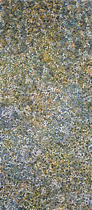 Sale 8743 - Lot 566 - Belinda Golder Kngwarreye (1986 - ) - Bush Plum Dreaming 197 x 87cm