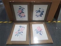 Sale 9152 - Lot 2081 - A set of four decorative prints of Camelias by Paul Jones, frame: 57 x 44 cm -