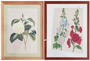 Sale 9011 - Lot 2076 - 2 Floral Studies