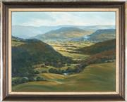 Sale 8870 - Lot 2005 - Colin Richardson - Overlooking Country Pastures 49.5 x 64.5cm