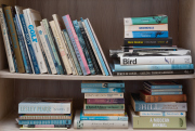 Sale 8677B - Lot 584 - A quantity of books across two shelves to include Beken of Cowes - Sailing Thoroughbreds and other sporting related novels